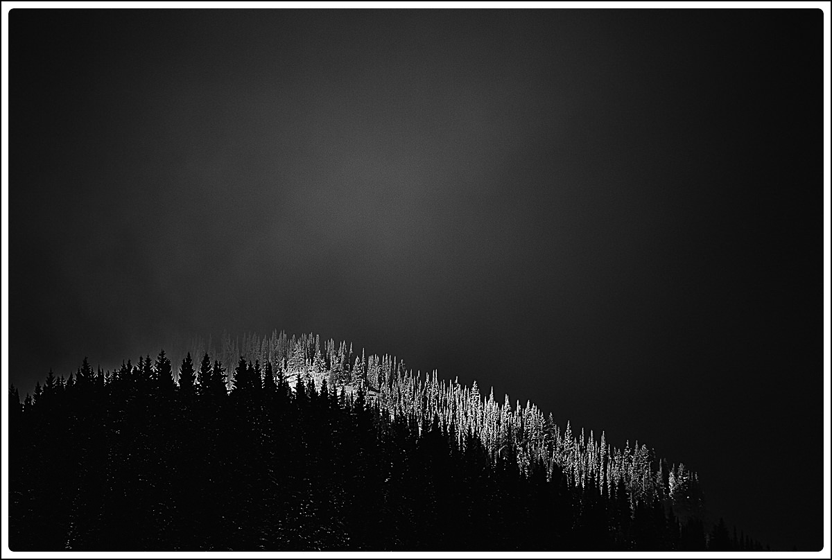 winter trees on mountain ridge,