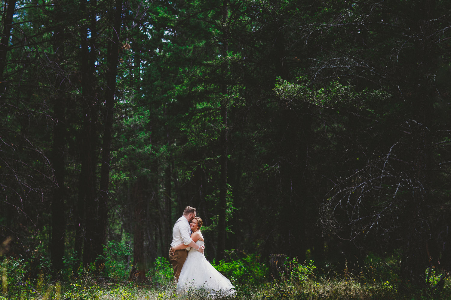 Bride and groom in big trees